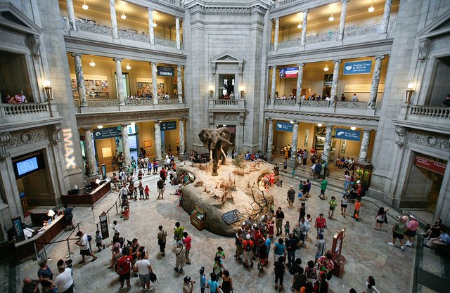 Family Vacation - Smithsonian National Museum