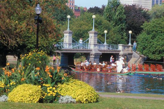 Bosston Gardens Swan Boats