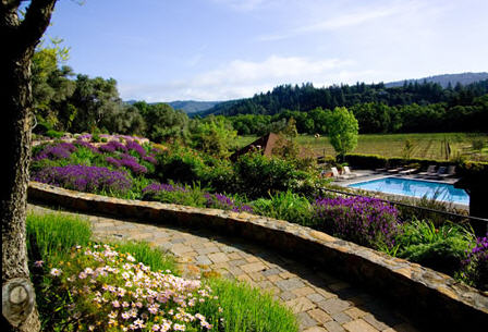 Wine Country Bed and Breakfast