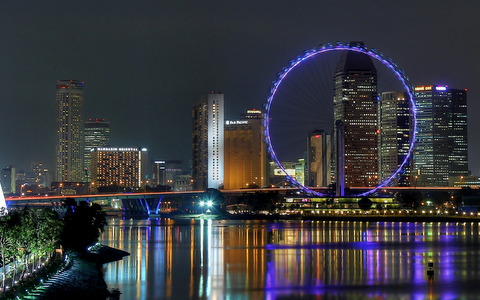 Singapore Flyer At Night