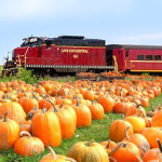 America's Favorite Fall Foliage Trains