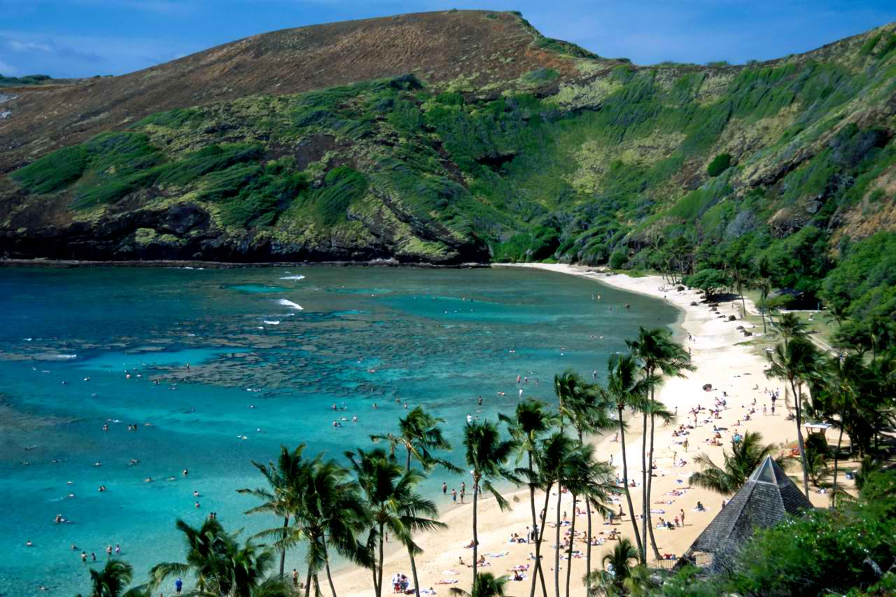 Best dive sites in hawaii top places to take the plunge for Plenty of fish oahu