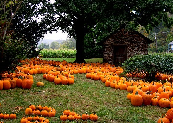 10 Top Halloween Celebrations in New England