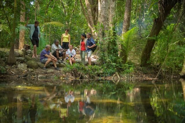 Mossman Gorge Daintree Rainforest Australia