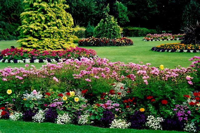 Dublin Merrion Square Gardens