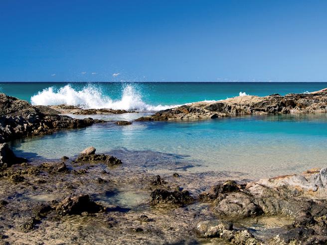 Chammpagne Pools Fraser Island