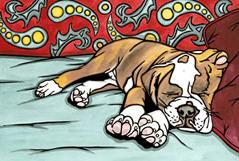 Sleeping Bulldog BnB