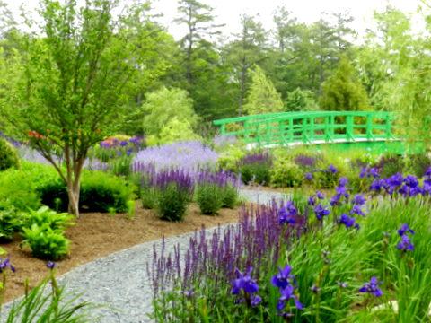 Mirbeau Inn Gardens Plymouth MA