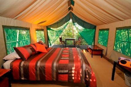 Mornington Wilderness Camp Australia