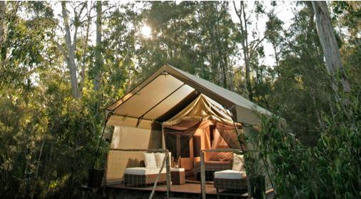 Paperbark Camp Australia