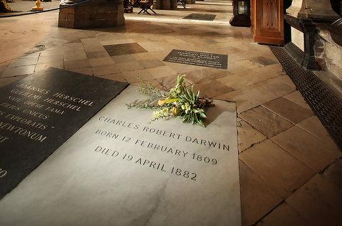 Charles Darwin Tomb