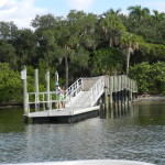 New Florida Eco Tours – A Refreshing Change From Theme Parks