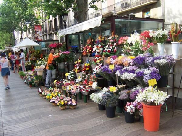 Las Ramblas Flower Market