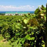 Lake Erie Wine Trail – A Fun & Spirited Road Trip Destination