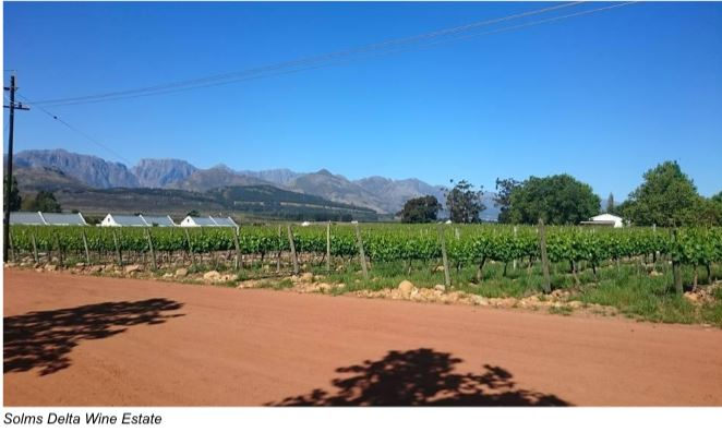 Solms Delta Wine Estate South Africa