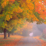 Deerfield MA in Fall Foliage Season