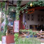 7 Best WiFi Coffee Hangouts In Ubud Bali