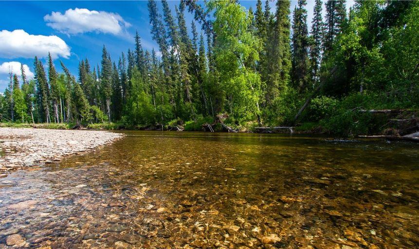 Chena River Alaska