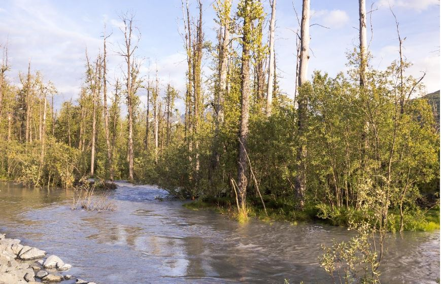 Lowe River Alaska