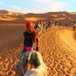 Morocco desert caravan