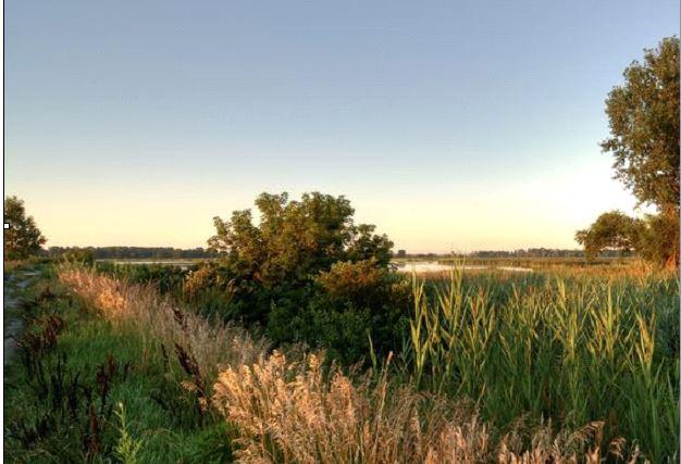 Detroit River Wildlife Refuge