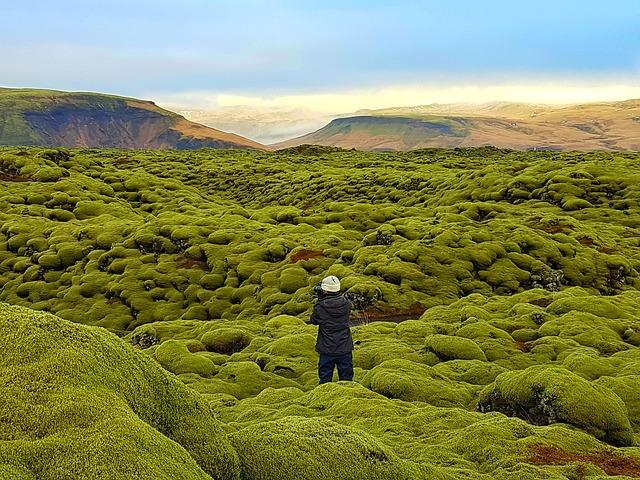 Lava Field Eldhraun Iceland