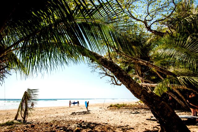 Costa Rica Surf Beaches