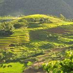 Top Scenic Attractions in Vietnam