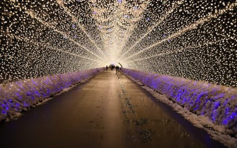 Fun Things To Do On A Winter Holiday to Japan