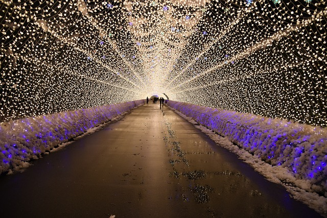 Japan Winter Lights