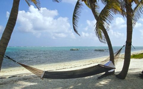 Top Cayman Island Fun, Here's What To See and Do