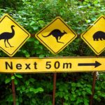 Australia Wildlife Signs