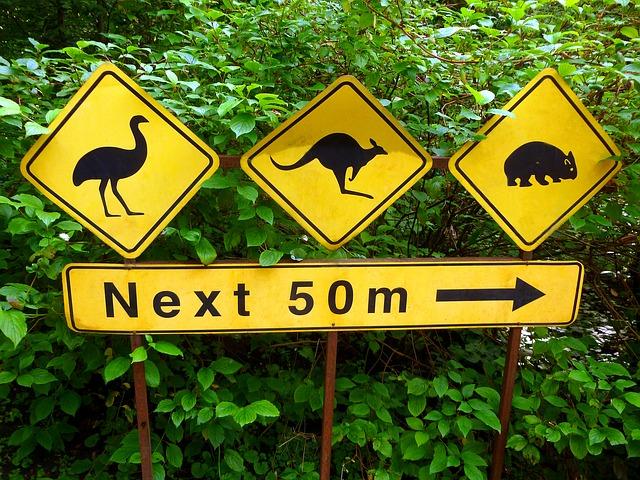 Australia Wildlife Signs