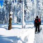 Top Tips for Safe Hiking in Winter Wonderlands