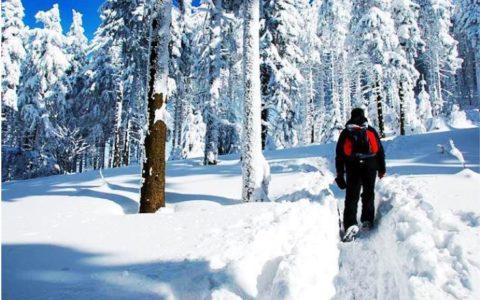 Top Tips for Safe Hiking in Winter Wonderlands