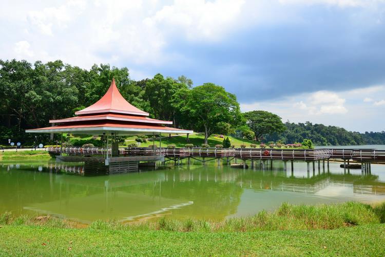 Mac Ritchie Reservoir Singapore
