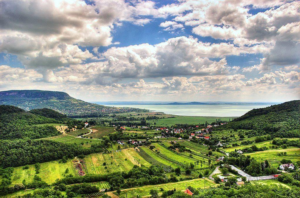 Lake Balaton Hungary Vineyards