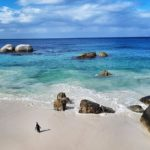 Best Beaches in Cape Town South Africa