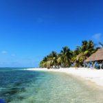 Belize Bird Caye