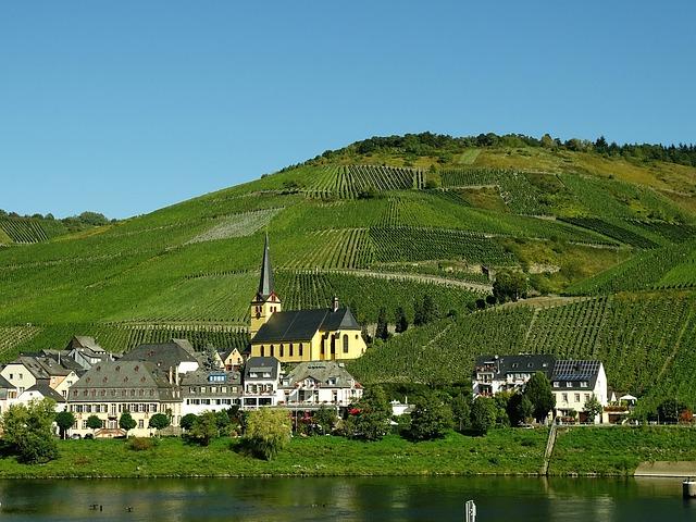 Vineyards Mosel Germany