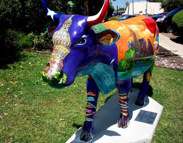 Austin City Cow