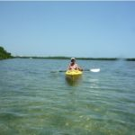 Key West Eco Kayak Tour