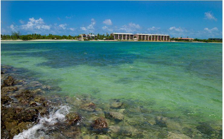 Key West Activities