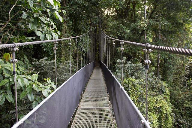 Costa Rico Eco Bridge