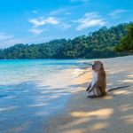 Secluded Thailand Beach