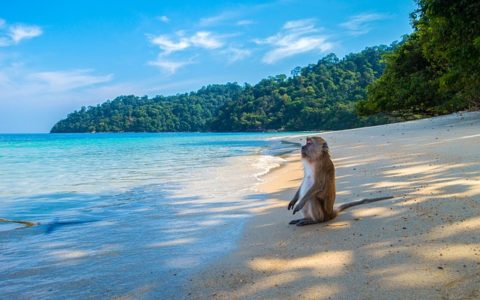 5 Delightfully Secluded Beach Destinations in South East Asia
