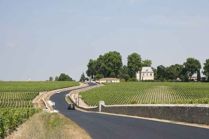 Bordeaux France Vineyard