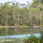 Exploring Tyagarah Nature Reserve on Australia's Gold Coast