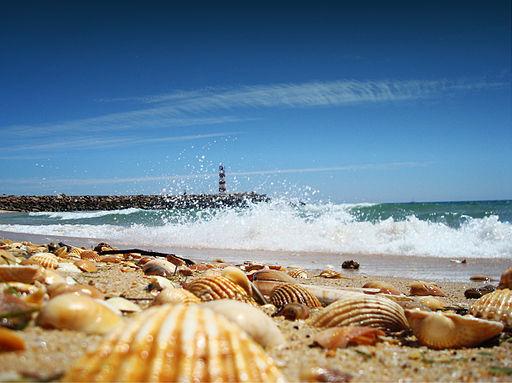 Ilha Barreta, Faro Algarve Portugal