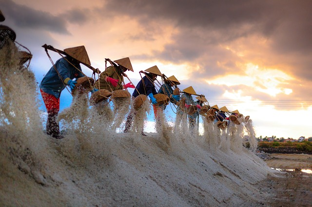 Salt Farmers Vietnam
